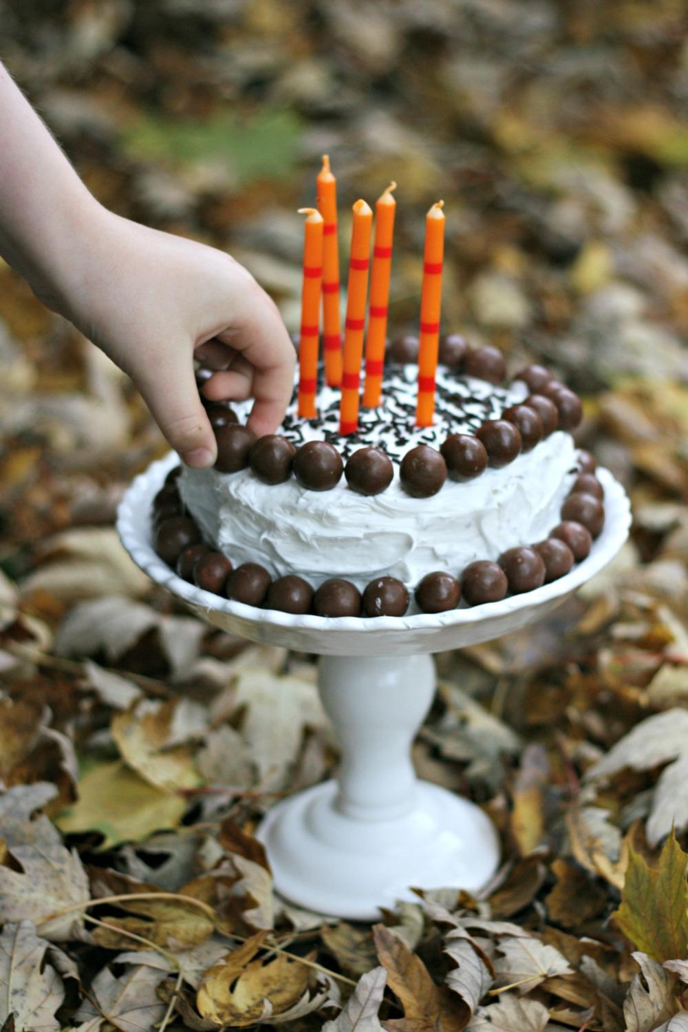 Steves birthday cake