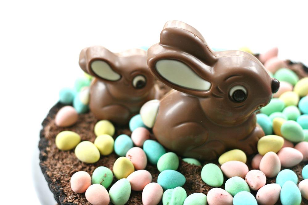 chocolate hens nest pie closse up