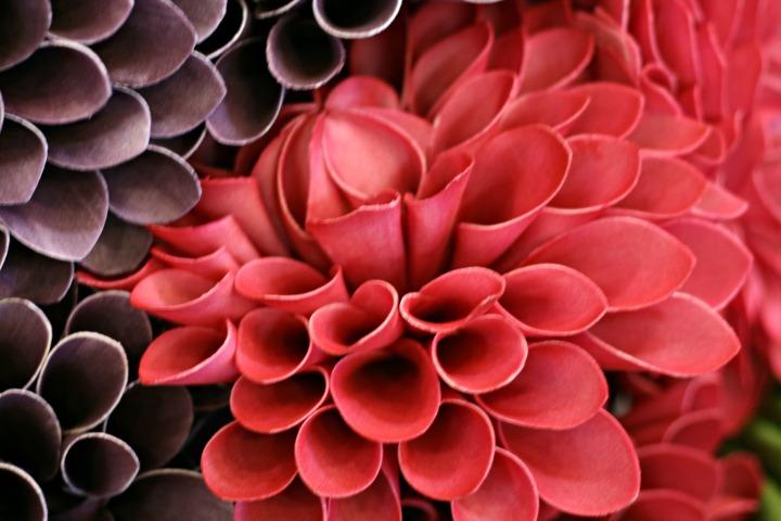 UB flowers