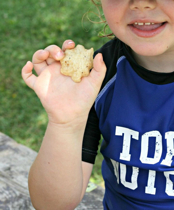 letsdopicnic james tostitos 2