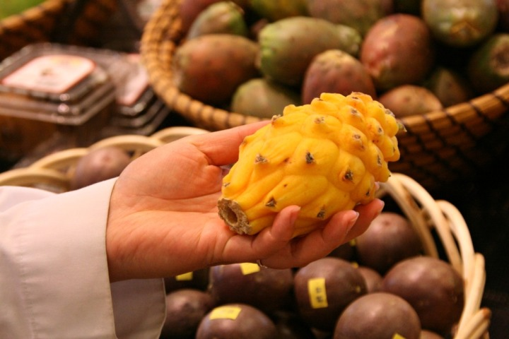 loblaws yellow dragonfruit