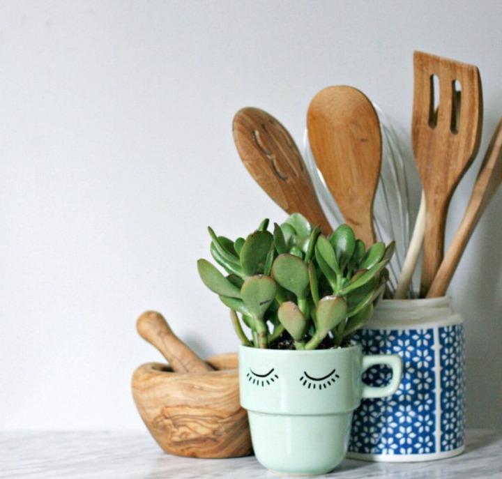 DIY DAMMIT Marked Mug Plant
