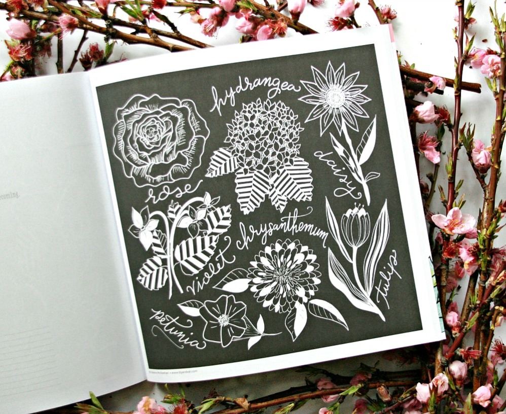Chalk-Style Botanicals Deluxe Coloring Book hydrangea