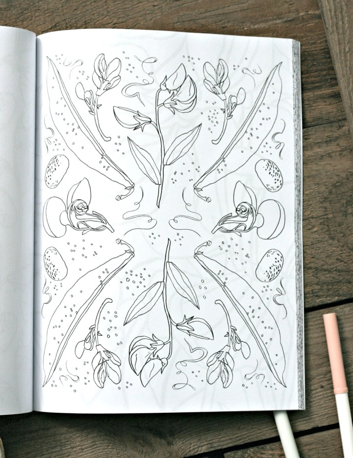 Flowers Coloring Book by Brittany Jepsen inside