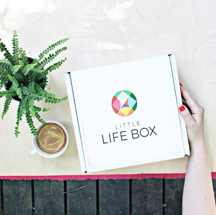 Little Life Box + A giveaway!