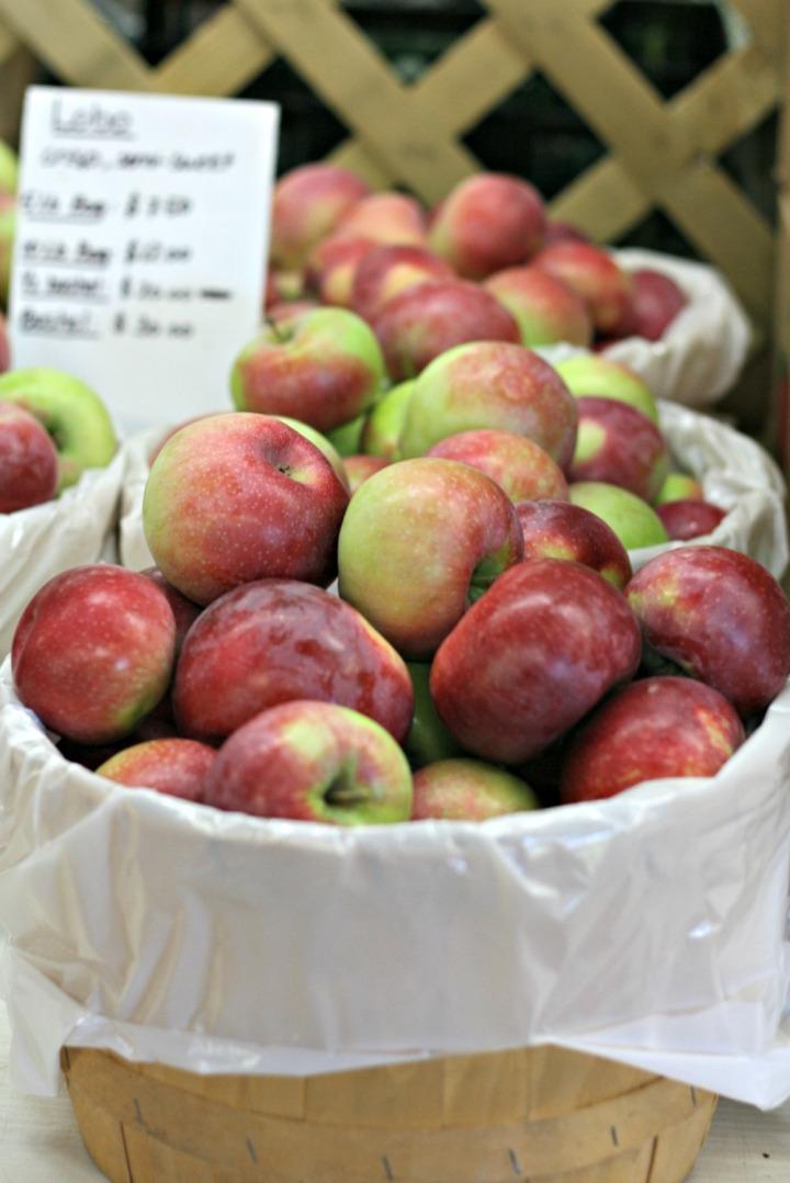 apple-picking-basket-of-apples