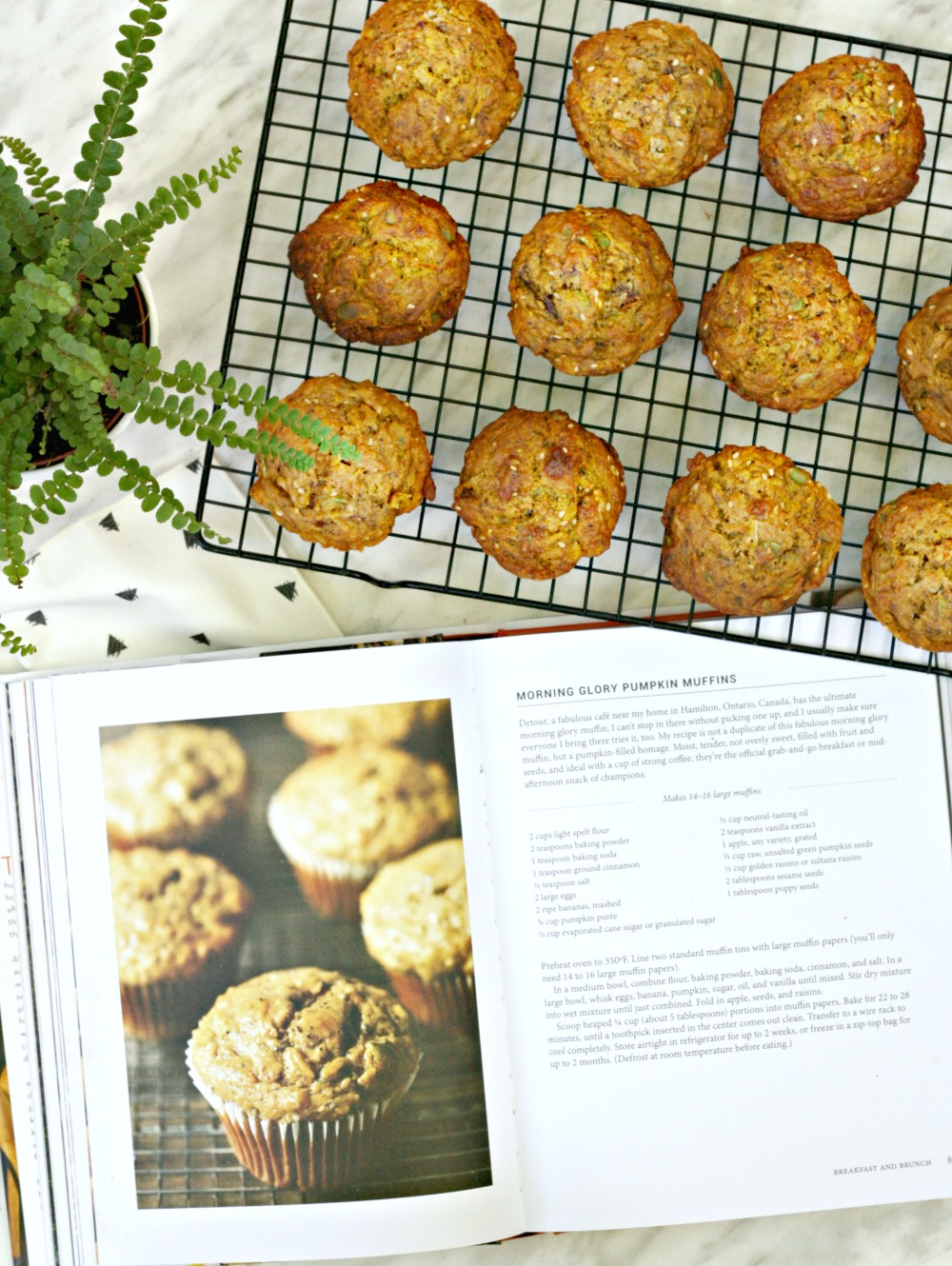 Purely Pumpkin morning glory pumpkin muffins full size