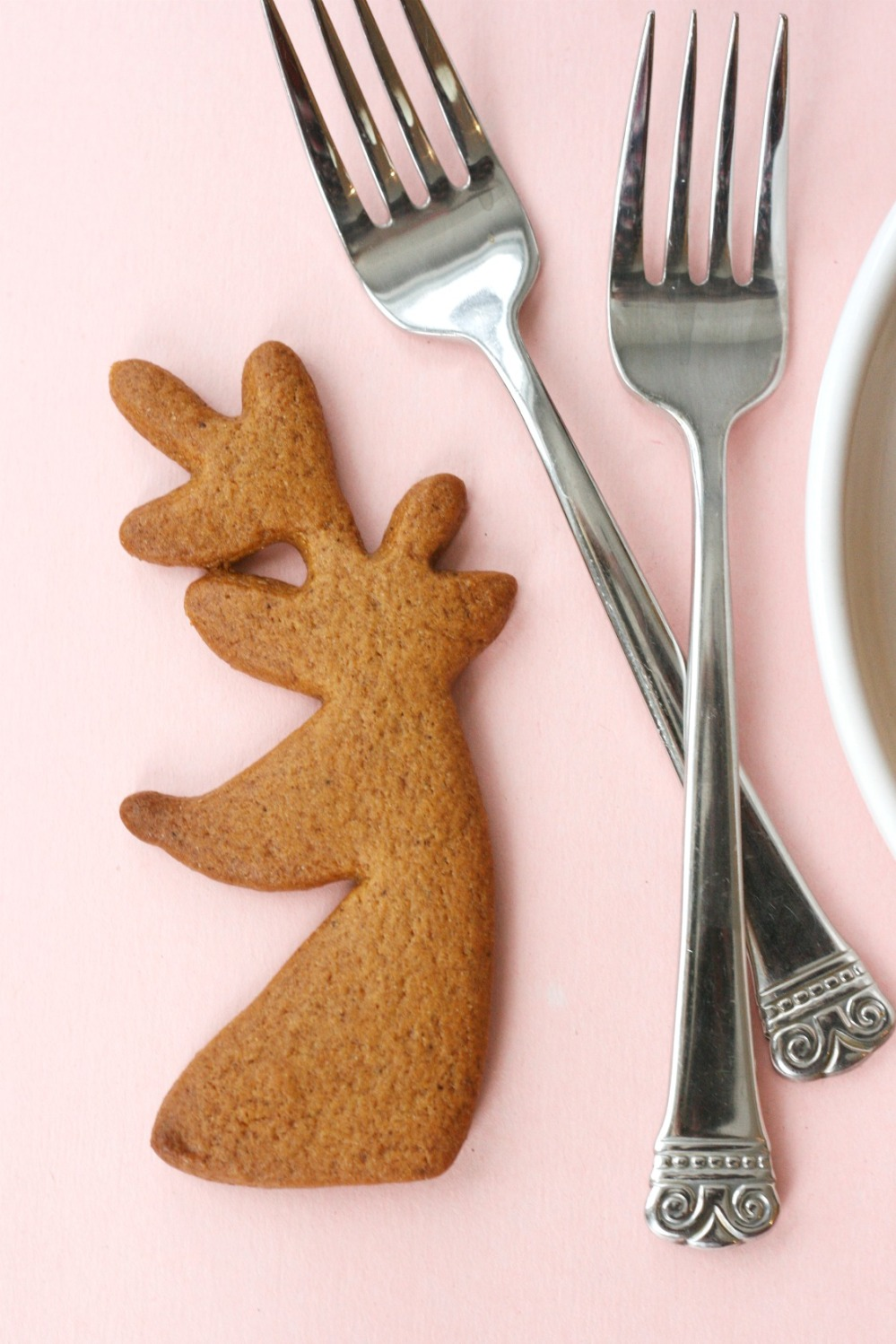 the-superfun-times-vegan-holiday-cookbook-gingerbread-cookie