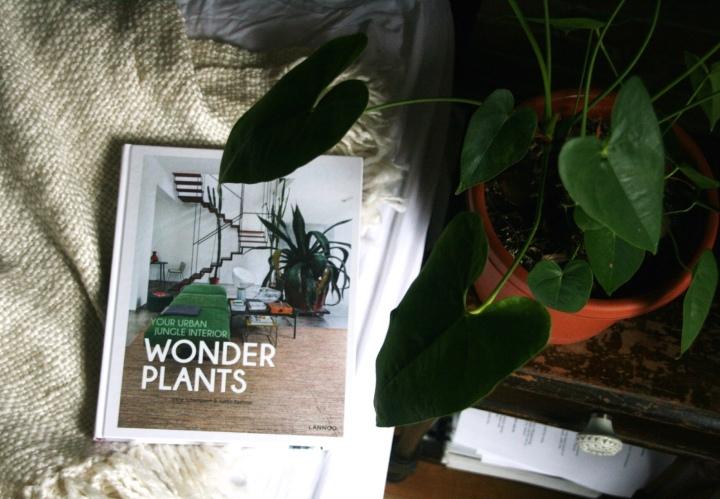 Wonder Plants: Your Urban Jungle Interior by Irene Schampaert & Judith Baehner + Win acopy!