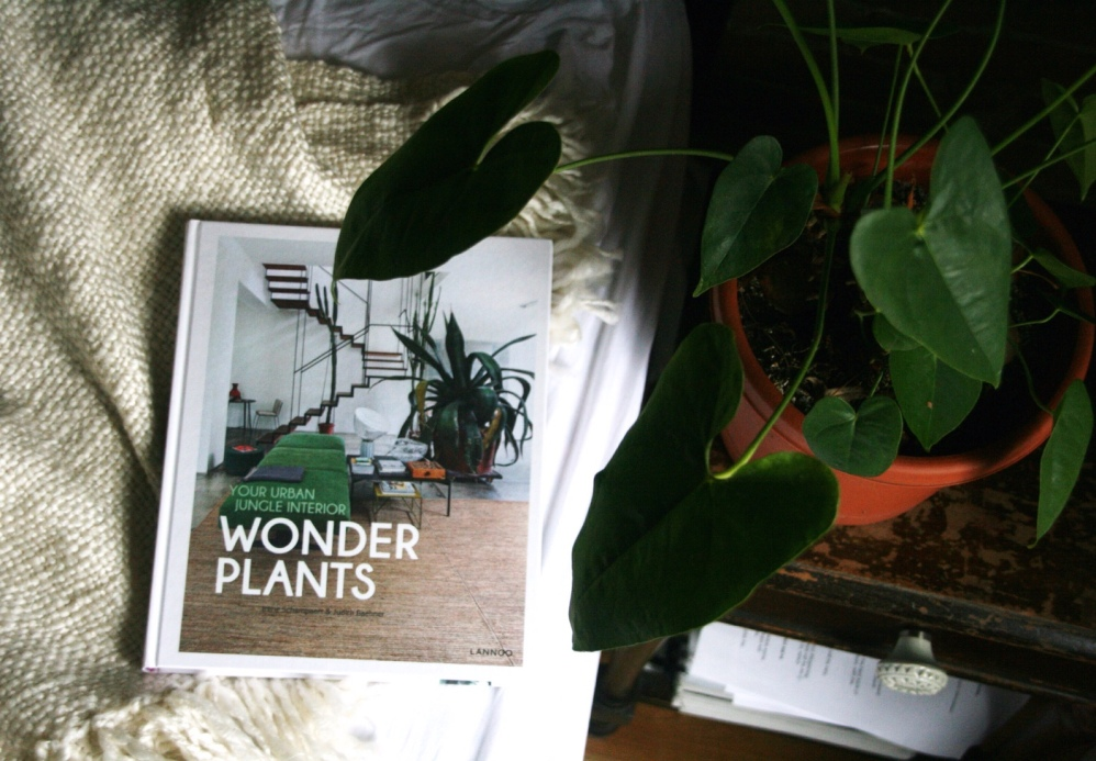 wonder-plants-cover-close-up