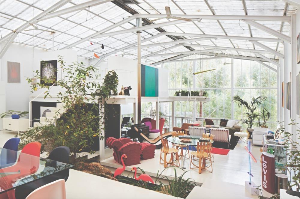 wonder-plants-your-urban-jungle-interior-john-henry