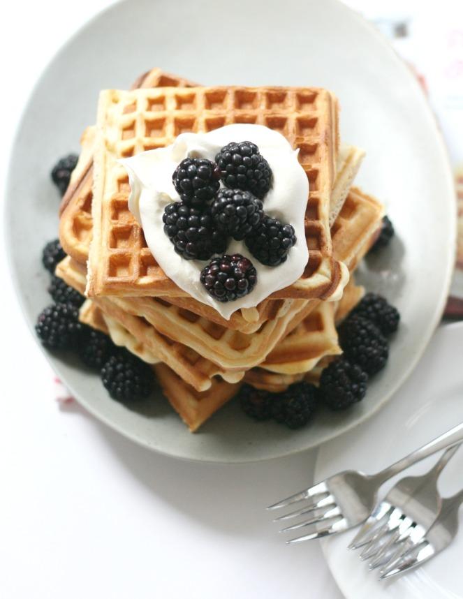 Pancakes and Waffles (lemon waffles top view 2)