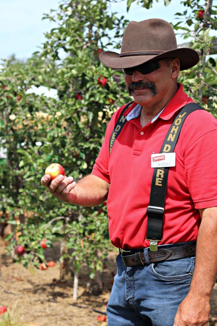 Chudleighs Glenn with Sunrise apple