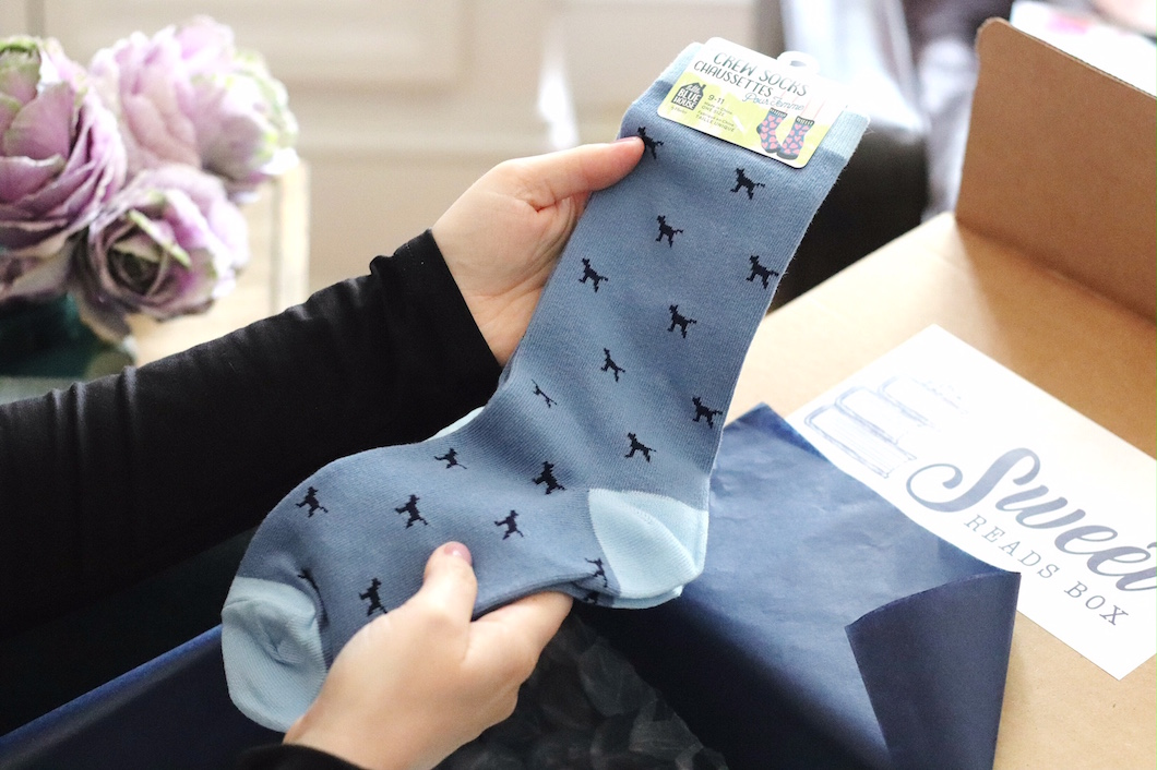 Sweet Reads Box October 2017 Hatley Tiny Blue Labs crew socks