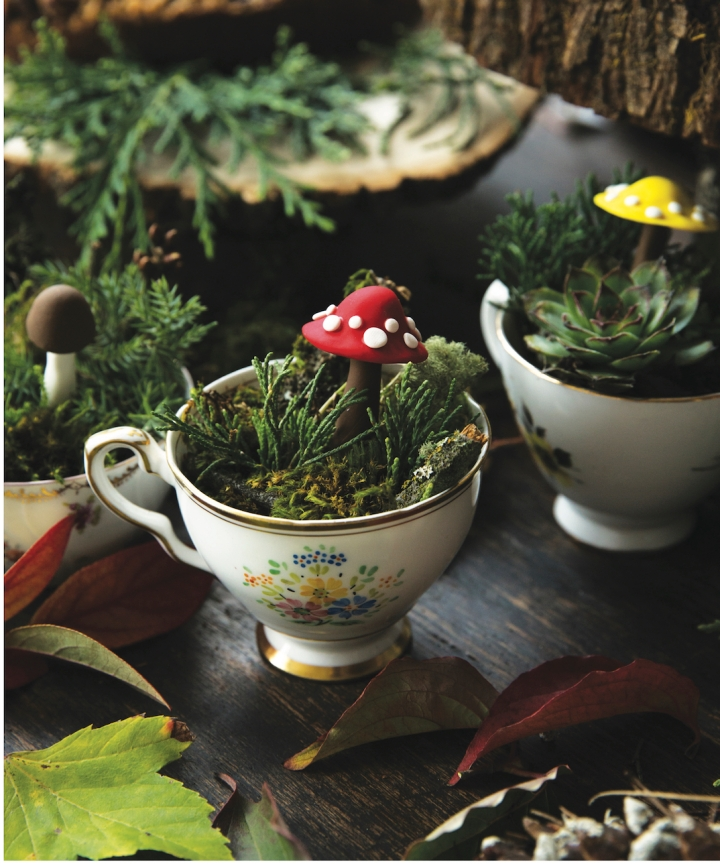 Scandinavian Gatherings_Teacup Terrariums_Photography by Charity Burggraaf