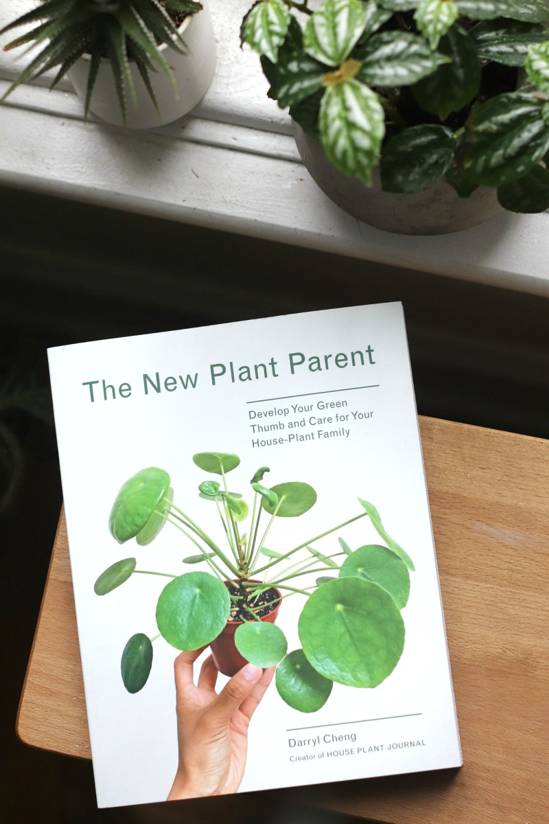 The New Plant Parent Develop Your Green Thumb And Care
