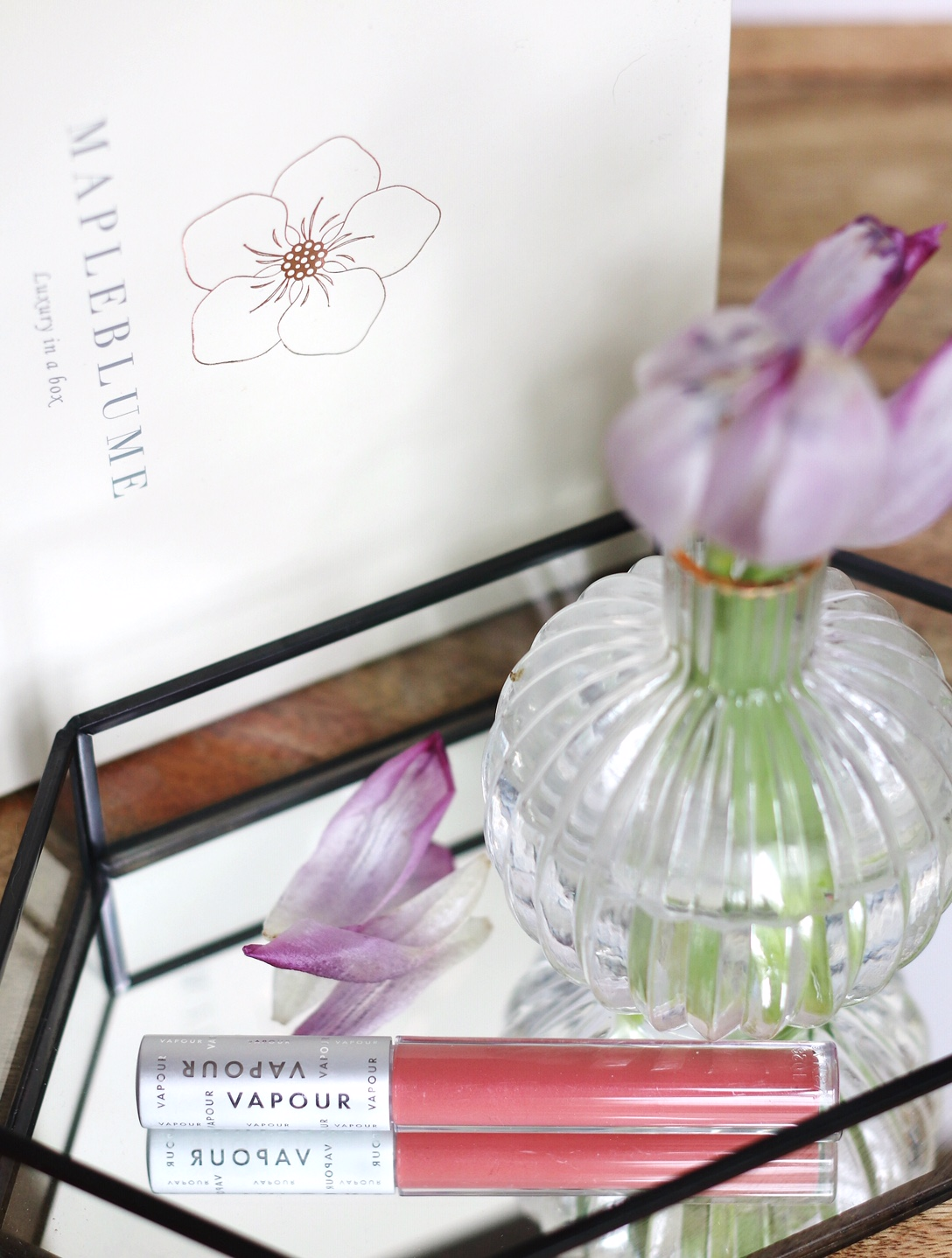 Mapleblume May Vapour elixir lip gloss in Trust