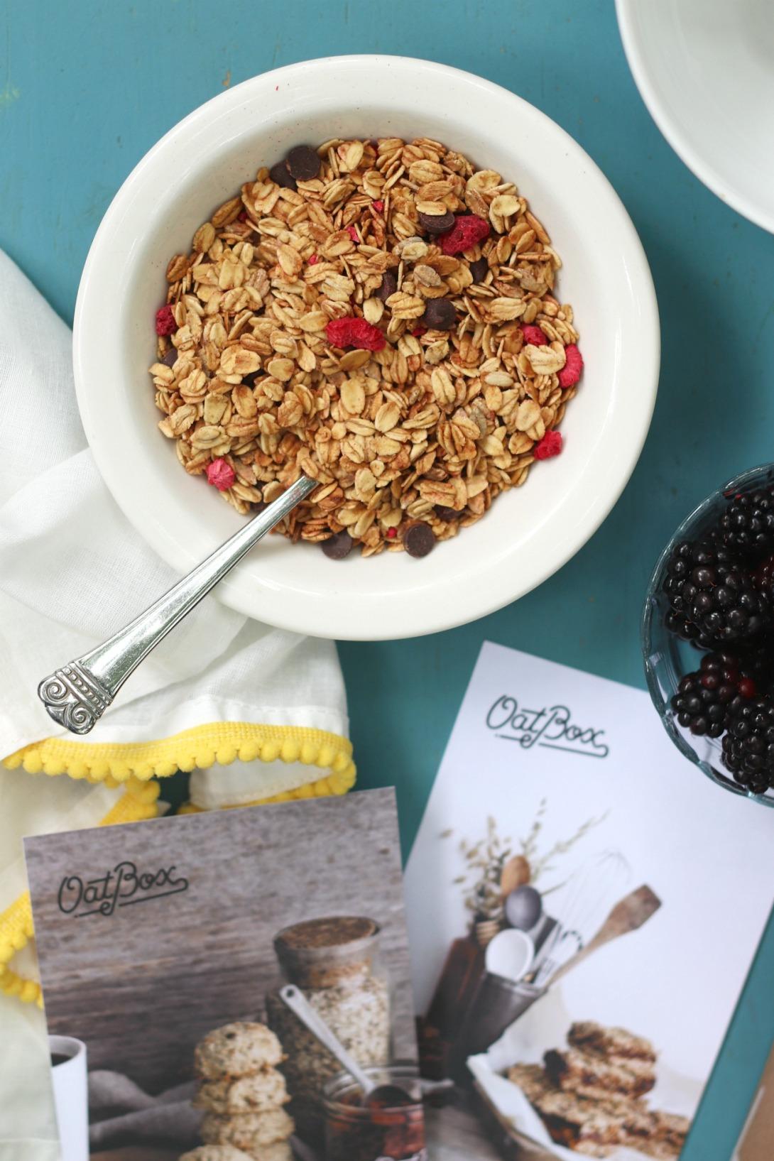 OatBox June 2019 dark chocolate and raspberry granola