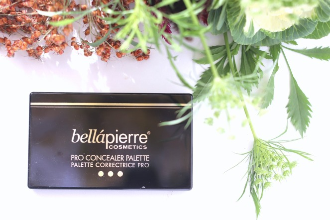 Glossybox October 2019 Bellapierre pro concealer palette ayob