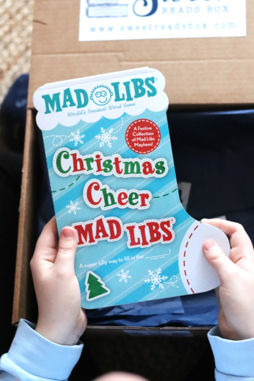 Sweet Reads Box Christmas Box Kids ages 8 to 12 Christmas Cheer Mad Libs try small things