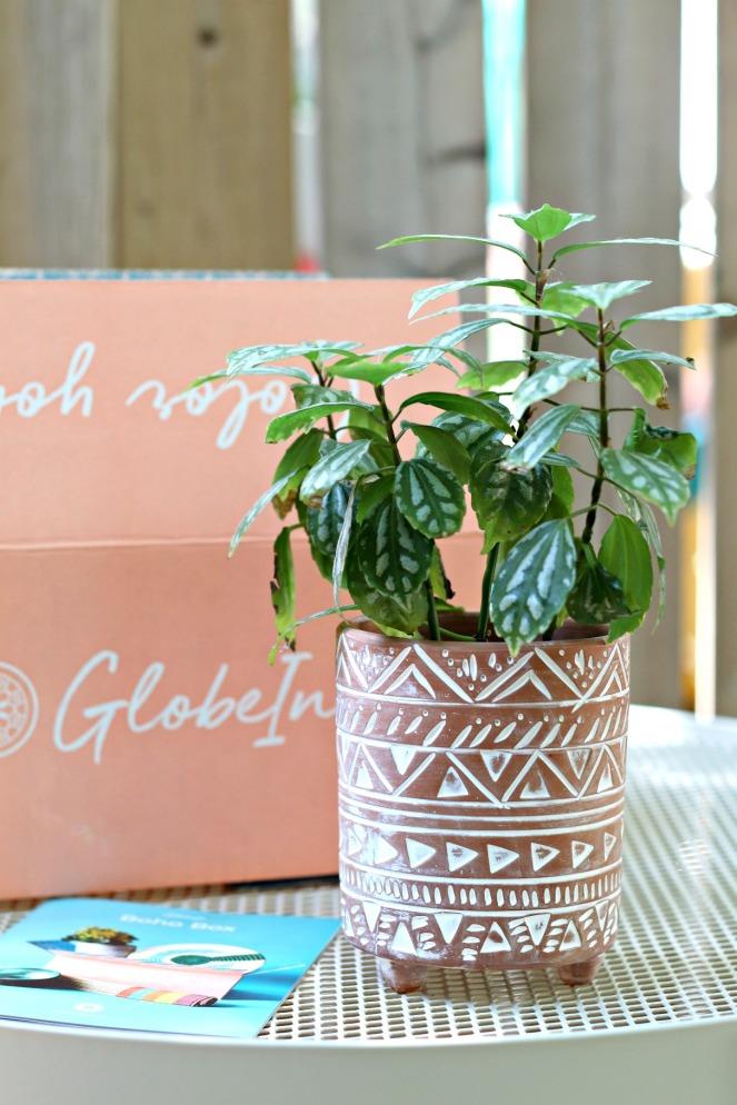 GlobeIn Boho Box Sierra Terracotta Planter